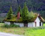 norweigengreenroofs