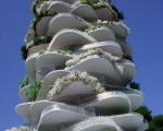 urban-cactus-header