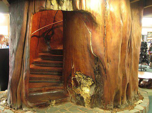 internal-log-stairway-2
