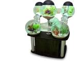 cool-aquariums-m