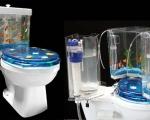 toilet-aquarium-2