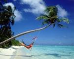 hammock_beach