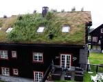 norweigengreenroofs2