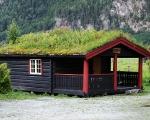 norweigengreenroofs5
