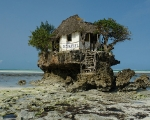 restaurant-on-zanzibar-beach-2
