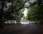 house-on-cedar-hill-00-1-800x550